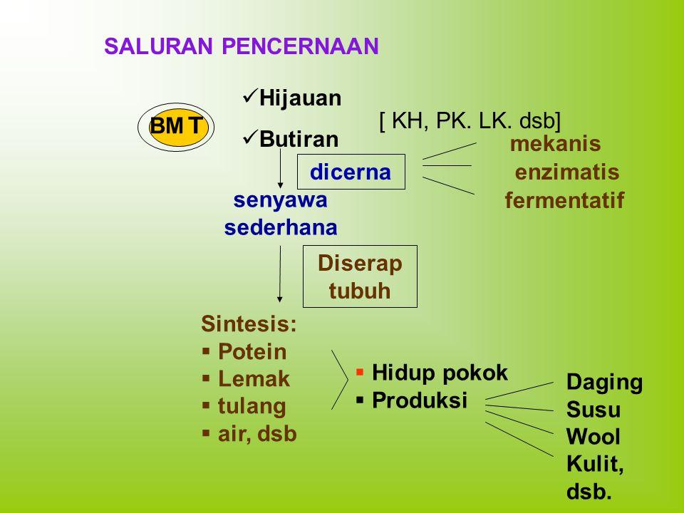 SALURAN PENCERNAAN Hijauan. Butiran. [ KH, PK. LK. dsb] BMT. mekanis. dicerna. enzimatis. senyawa.